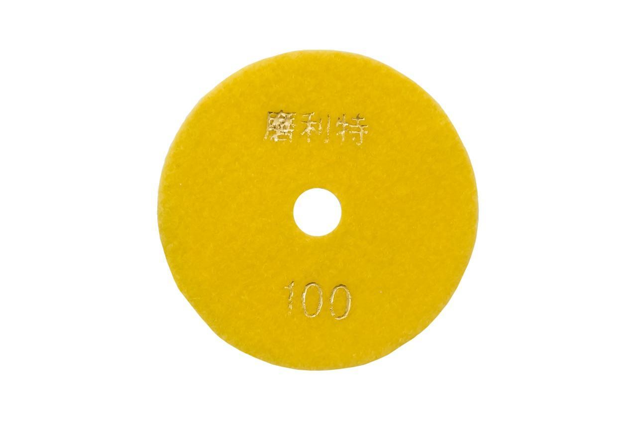 Диск алмазный шлифовальный Асеса - 100 мм x P100