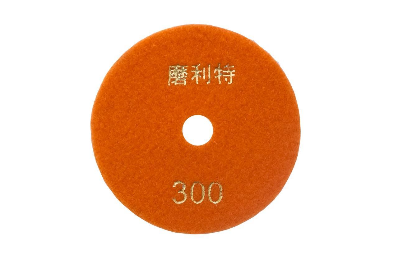 Диск алмазный шлифовальный Асеса - 100 мм x P300