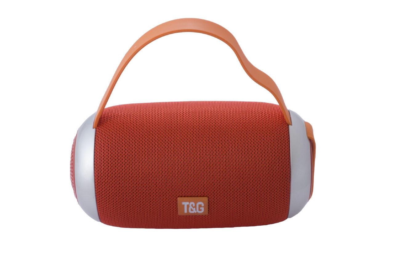 Колонка портативная T&G TG-112