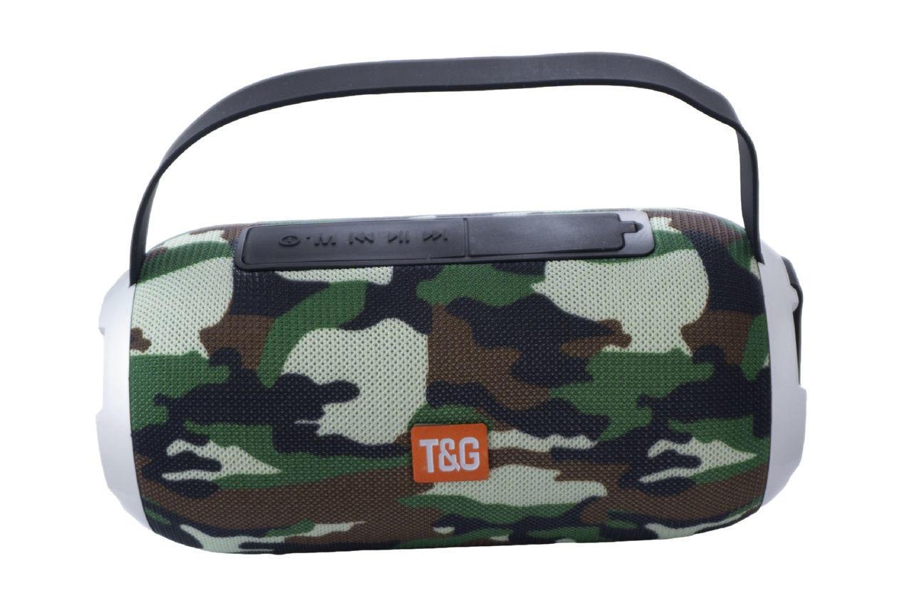 Колонка портативная T&G TG-509