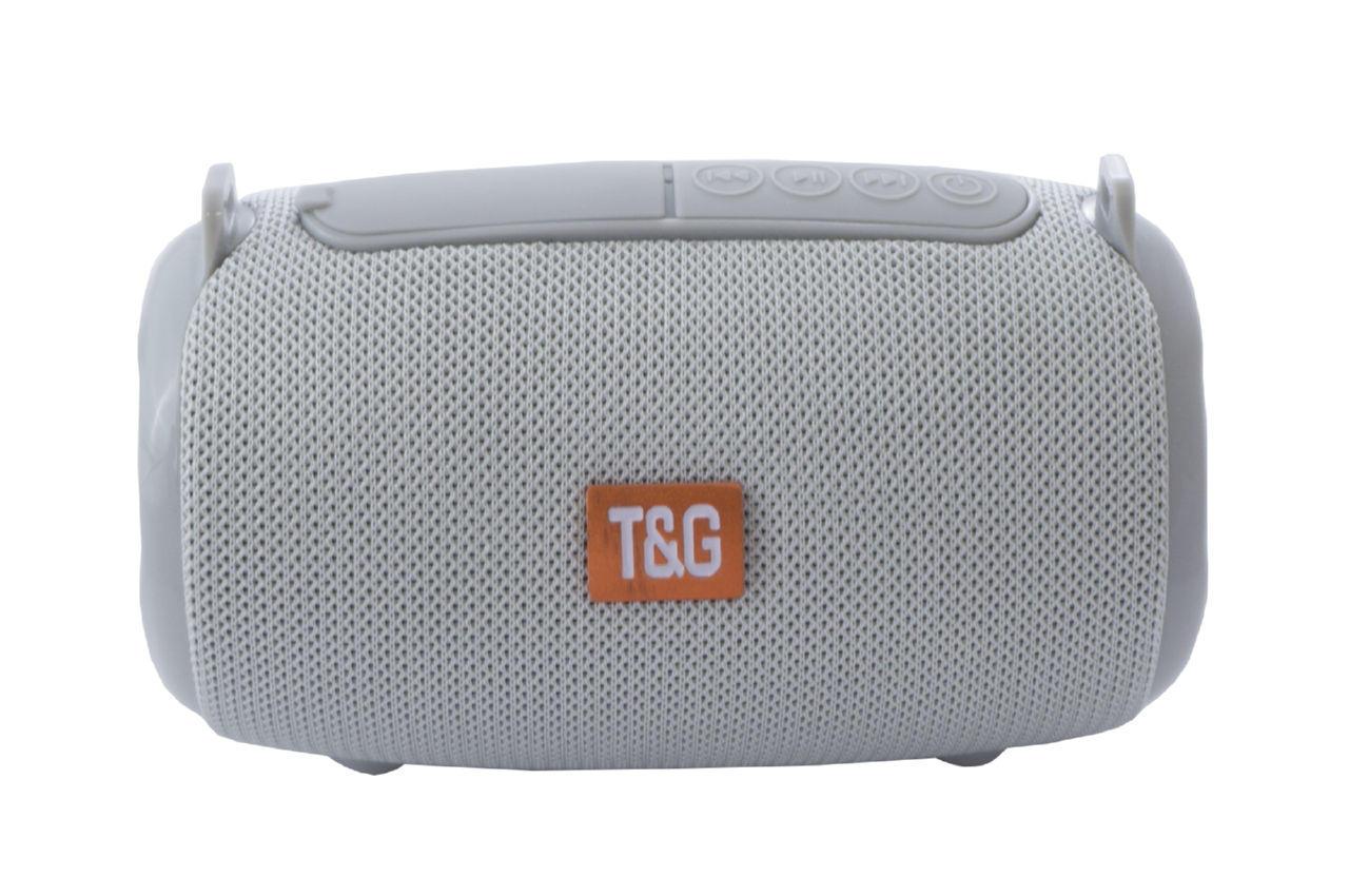 Колонка портативная T&G TG-533